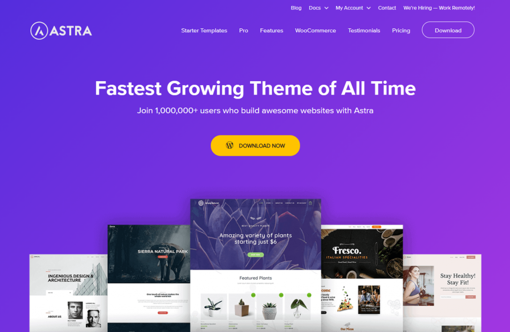 Astra WordPress Theme Image